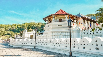 BEST OF SRI LANKA Wildlife, Spices and Forts